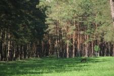 2005_baltikum_022