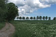 2005_baltikum_028