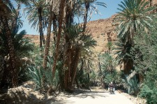 1997_marokko_256